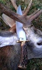 2g_hunting_knife_bowie.jpg