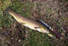 2g_hunting_knife_trout-bavaria.jpg